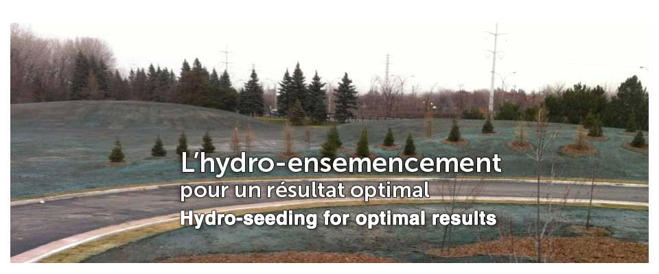 Hydro-seeding for optimal results